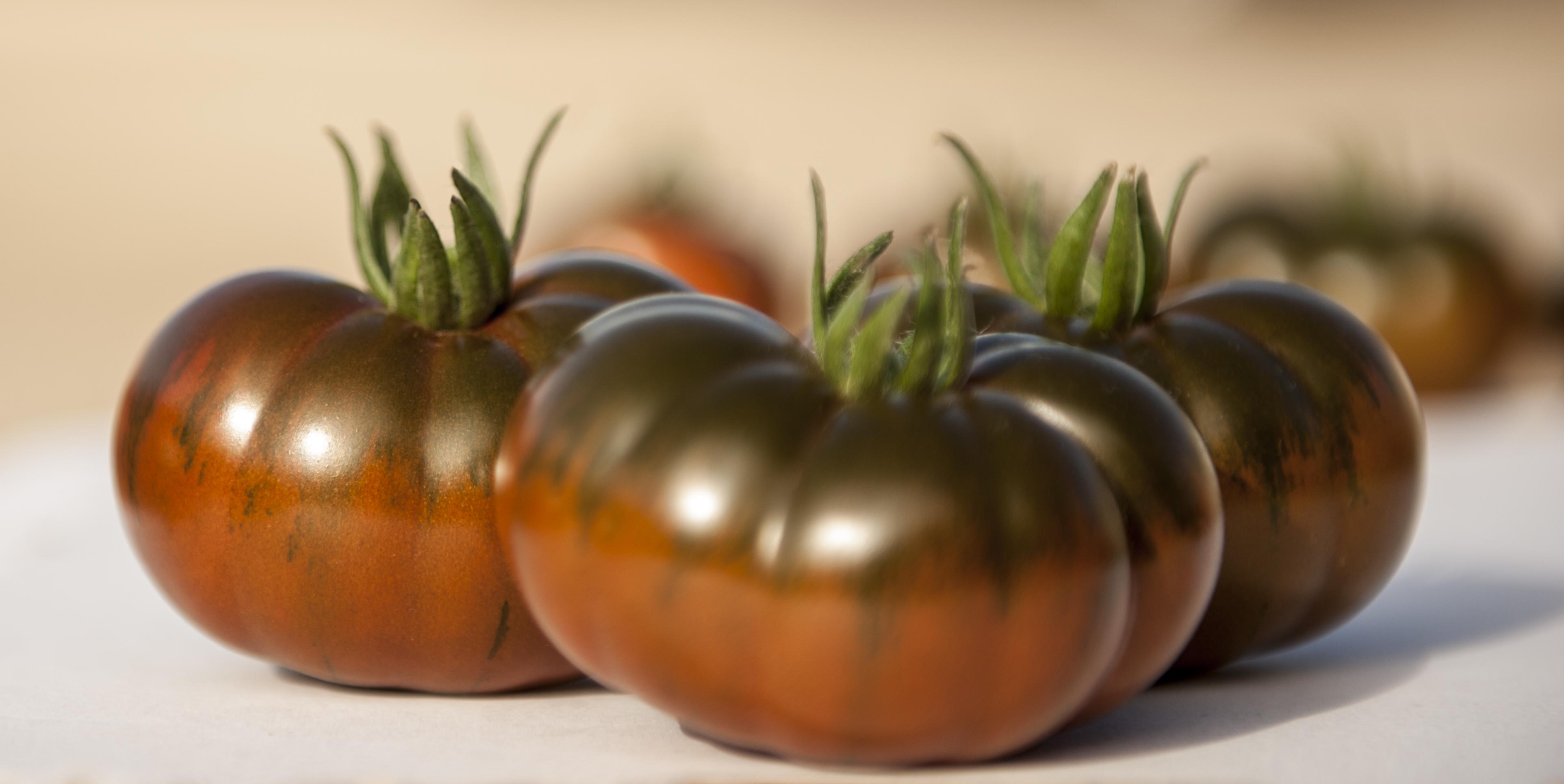 tomates ibérikos